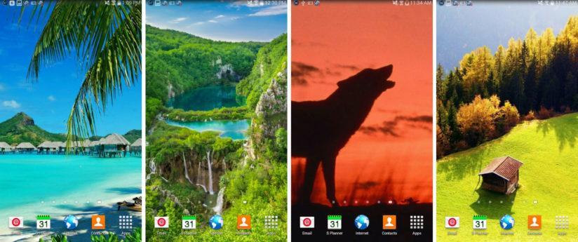 обои на телефон природа